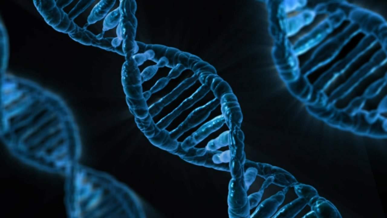 Malware en código de ADN